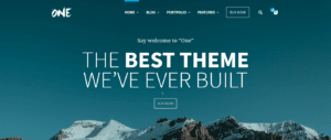 One WordPress Theme