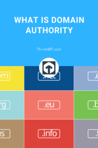What is meant by domain authority?