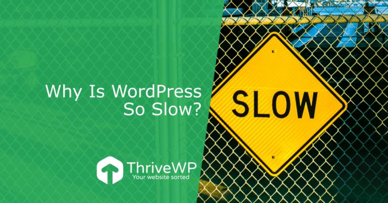 ThriveWP Blog for WordPress tips, tricks and information.