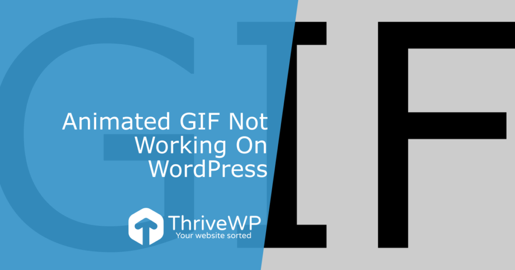 Animated Gif Not Working On WordPress