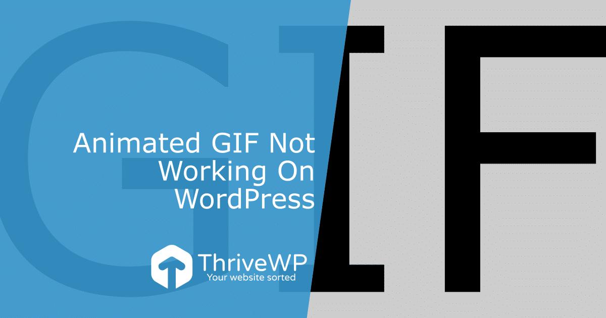 UK WordPress Support Animated Gif Not Working On WordPress