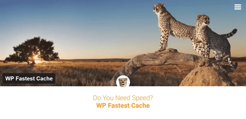 WordPress Website Caching